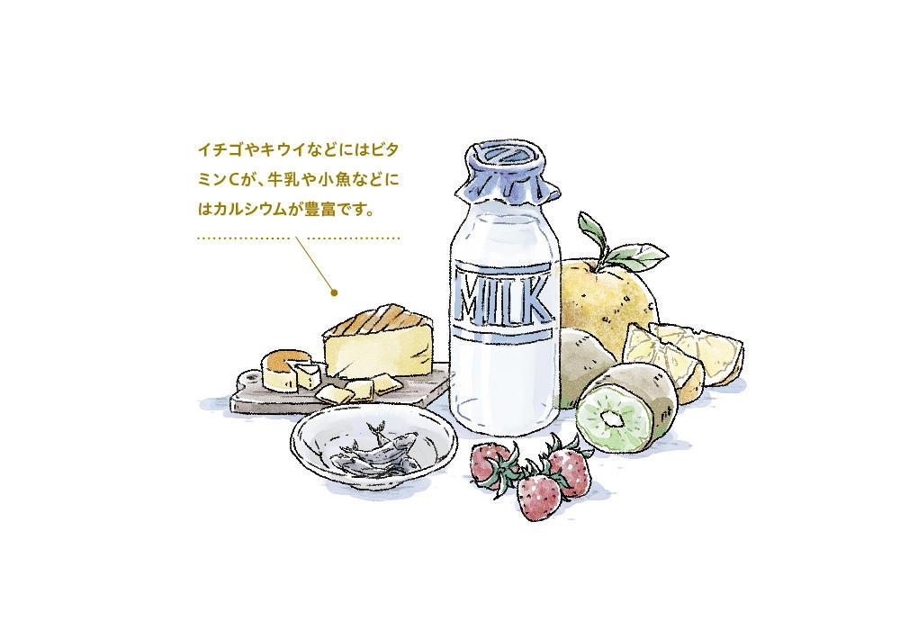 カルシウムの多い乳製品