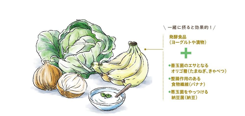善玉菌を増やす食べ物のイラスト